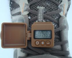 geopalz pedometer