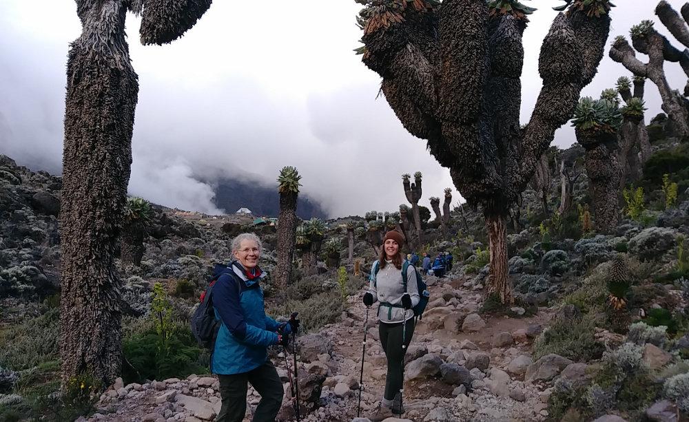 Kilimanjaro Baranco Camp