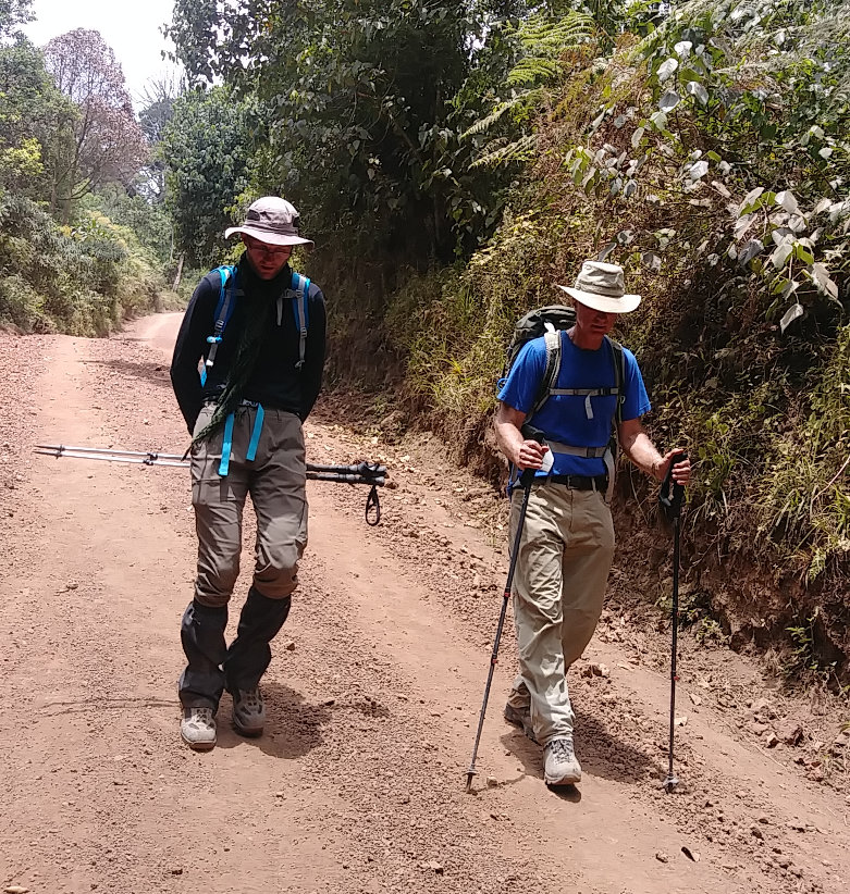 Kilimanjaro Roadwalk