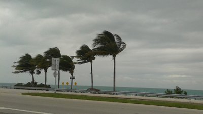 Windy Keys Weather